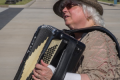 Make Music Day accordionathan